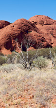 AUSTRALIA,AYERS ROCK-CIRCA AUG...