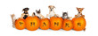 canvas print picture Cats and Dogs Over Thanksgiving Pumpkins