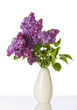 Blooming Lilac branches in white vase