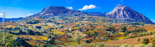 Photo Colorful carpet of vineyards in autumn colors. Benevento, Italy