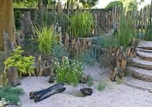 A Seaside Garden With Driftwoo...