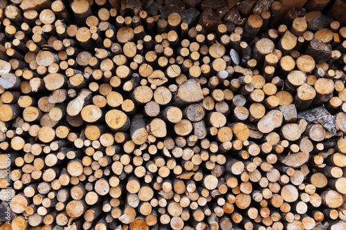 In de dag Brandhout textuur Firewood logs wood background