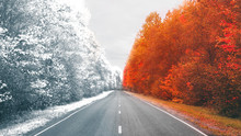 Winter And Autumn In One Photo Of The Road