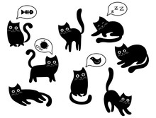 A Set Of Black Cats. A Collect...