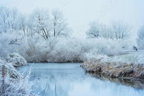Printed kitchen splashbacks Light blue Frozen river in the forest