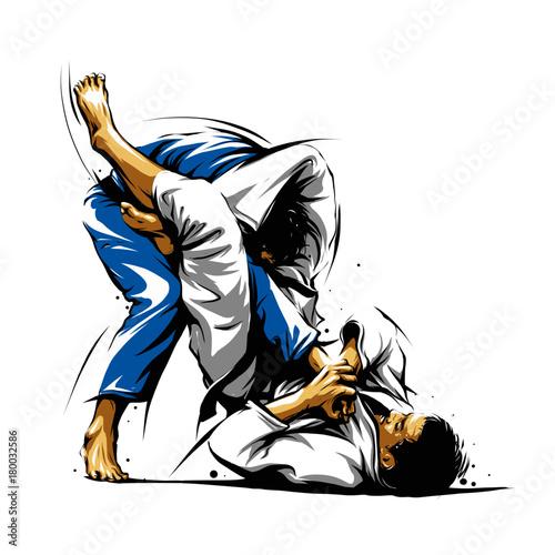 Photo Brazilian Jiu-Jitsu Triangle Choke