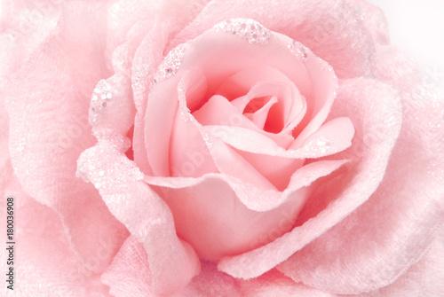Plakat różowa tkanina różowa tekstura