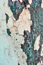 Cracked Faded Pink Paint On Gr...