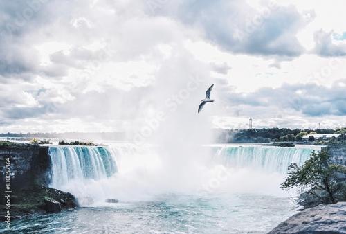 Poster Nautique motorise Seagull over Niagra Falls
