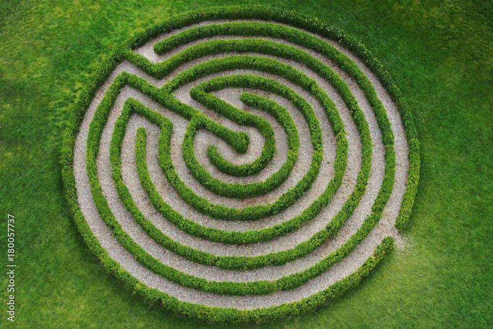Fototapeta zielony, okrągły labirynt