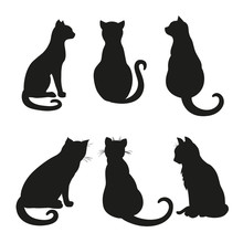 Cats. Silhouette. Hand Drawn Cats On Isolation Background. Black And White Illustration For Coloring. Doodles For Icons