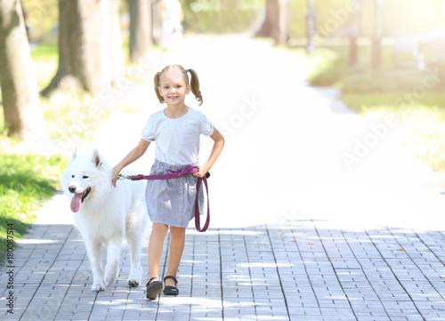 Fototapeta Cute little girl walking dog in park obraz