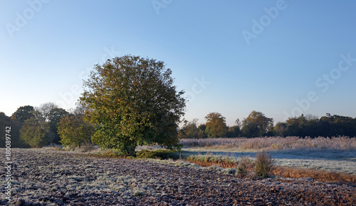 Photo frosty landscape in Auvers sur Oise country