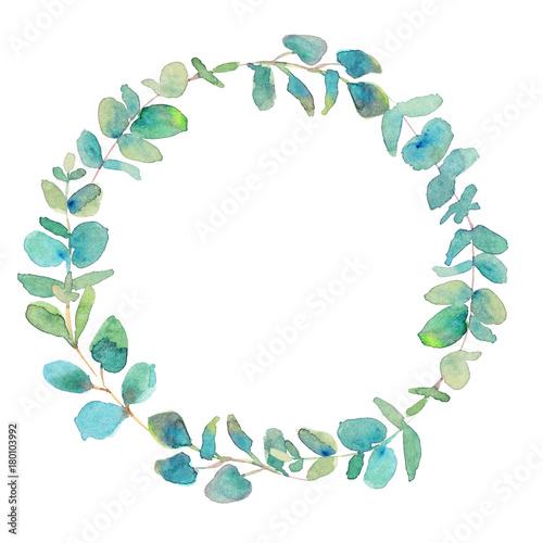 Fotografia  Wreath of eucalyptus branches. Watercolor illustration