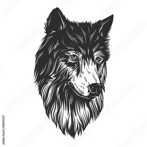 Naklejki wilk  rysowanie-reki-glowy-wilka