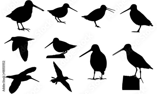 Photo Snipe Silhouette Vector Graphics