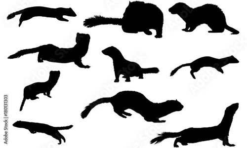 Photo Stoat Silhouette Vector Graphics