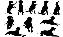 Dobermann Dog Silhouette Vecto...