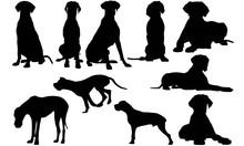 Great Dane Dog Silhouette Vect...