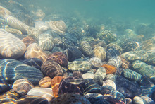 Underwater Shot: Pebble On Sea...