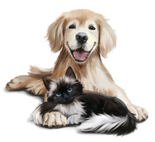 A Dog And A Cat  Watercolor Painting