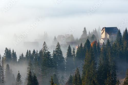Poster Morning with fog Autumn Carpathian village, Ukraine.