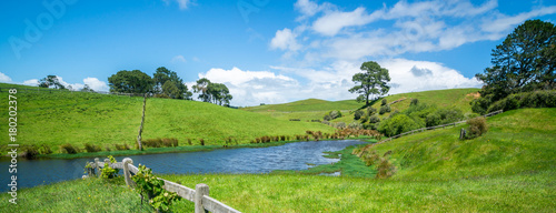 Spoed Foto op Canvas Nieuw Zeeland Green Grass Field in the Countryside Landscape