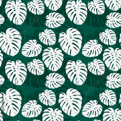 Fototapeta Seamless monstera palm leaves pattern for your summer background Vector tropical exotic illustration