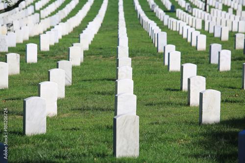 Foto op Canvas Begraafplaats White graveyard and distributed tombstone