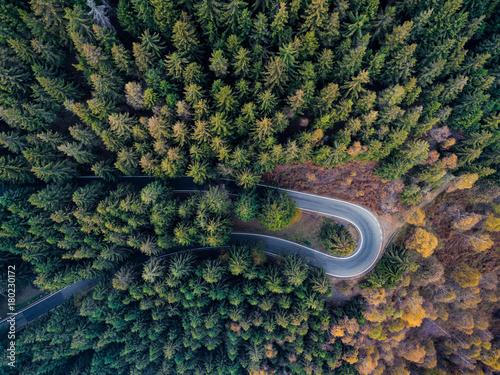 zasierzutny-widok-z-gory-anteny-na-spinke-zakret-w-zakrecie-drogi-w-wiejskim-lesie-sosnowym-jesienia-spadek-pomaranczowe-zielone