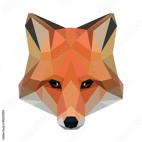 Valokuva  Vector polygonal fox isolated on white