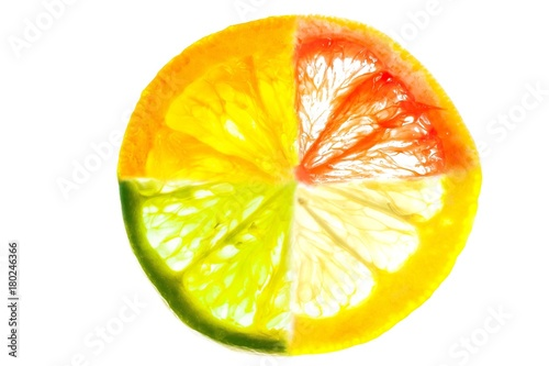 Fototapety, obrazy: Mixed slice of citrus fruit. Collage of orange, lemon, lime, grapefruit slices isolated on white.
