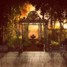 Mystery Park / A Magical Park ...