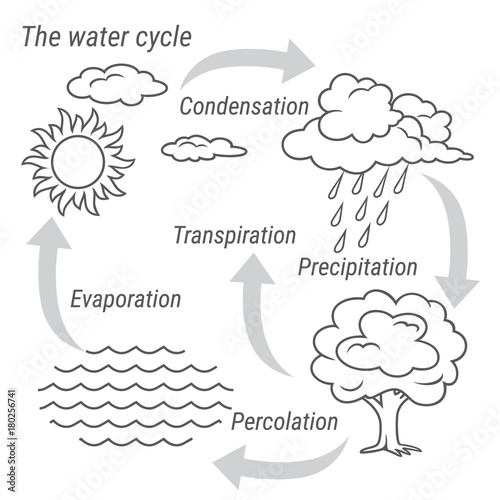 water cycle black and white  vector schematic