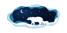 Paper Illustration With Polar ...