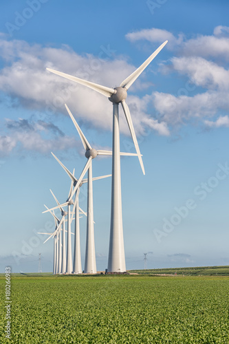 Foto  Windfarm in Dutch landscape with large field of sugar beets