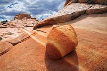 Striated Sandstone.  Paria Can...