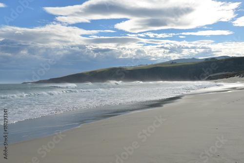 Photo  Sandfly beach - Otago Peninsula - New Zealand