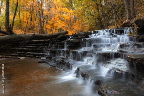 Slika na platnu autumn cascade