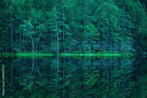 Fototapeta 森林と湖 御射鹿池