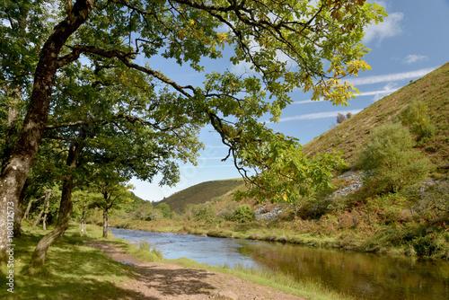 Foto op Aluminium Oceanië Path in Doone Valley, Exmoor, North Devon