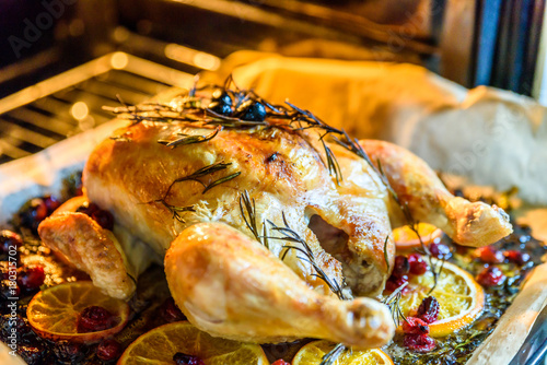 Appetizing Roast chicken turkey with Orange Slices Cranberries and Herbs in the Poster