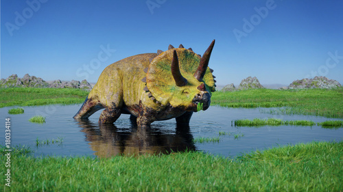 Triceratops horridus dinosaur from the Jurassic era eating water plants  3d illustration