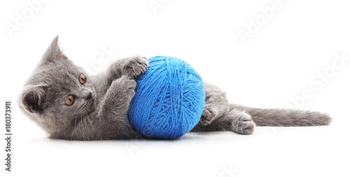 Fototapeta Gray cat with a ball. obraz