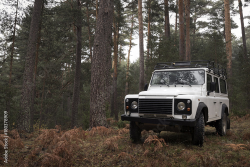 Fotografie, Obraz  4x4 in the middle of the forest on a cloudy autumn day.