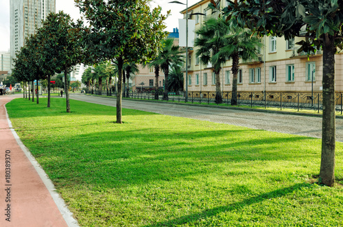 Foto op Plexiglas Stadion View of the beautiful green city street with lawn, palm trees, trees, bicycle road.
