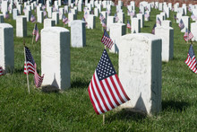 Military Graveyard With Flags