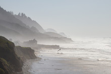 Misty Cliff And Ocean Beach, Florence, Oregon. Copy Space.