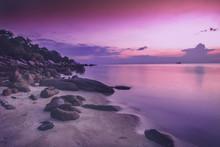 Beautiful Bright Purple Pink S...