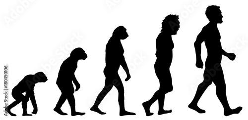 Fototapeta Human evolution graphic obraz